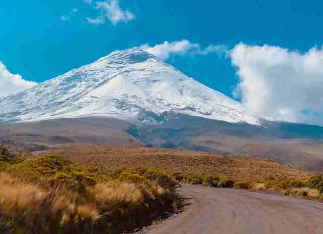 Cotopaxi Volcano Day Trips from Quito